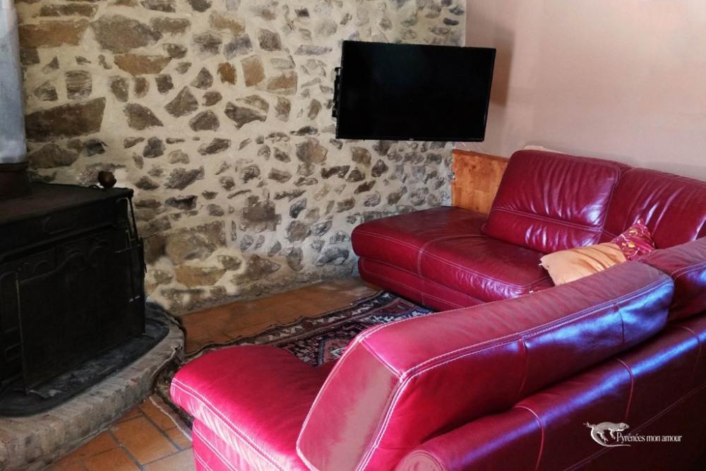 coin salon avec cheminée et TV