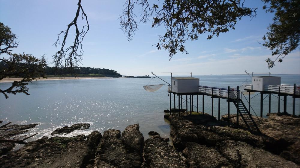 plage du platin à saint-palais-sur-mer