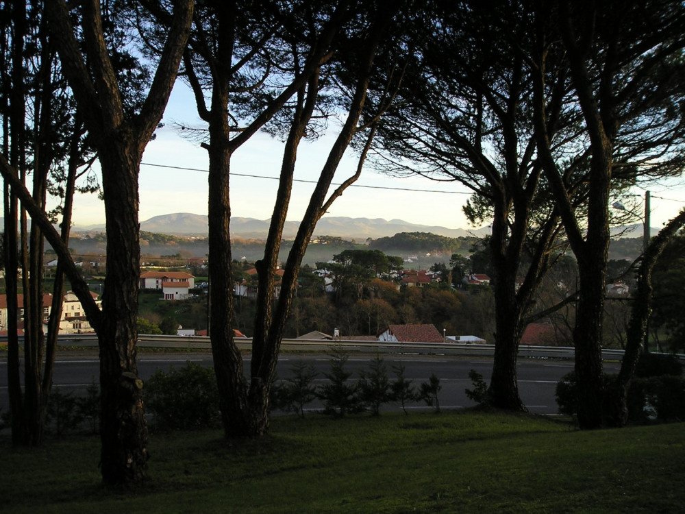 La vue depuis la terrasse