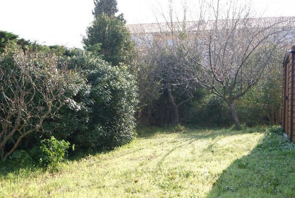 2ème partie du jardin
