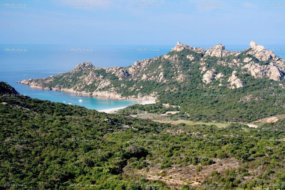 et la tour de Roccapina (au sud)