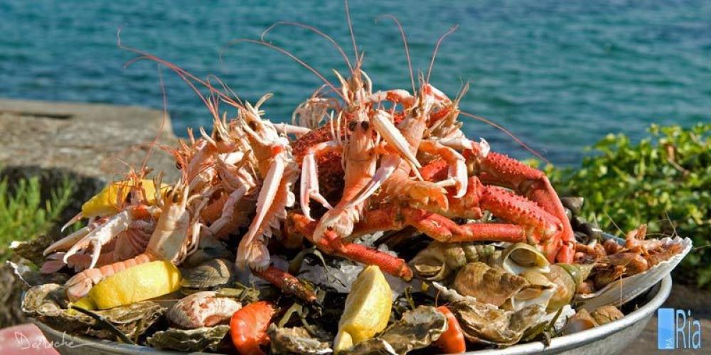 Plateaux de fruits de mer sur commande