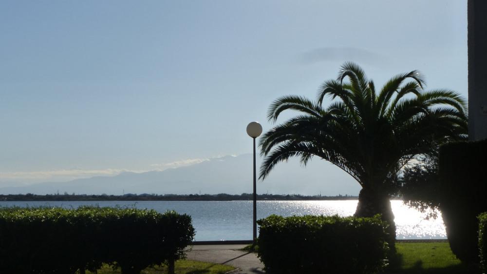 L' après midi à Parc Dominica