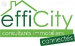 logo Efficity - haute-garonne - toulouse - dablanc christian