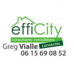 logo Efficity - montmorency - greg vialle