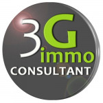 logo Agent commercial 3g immo briche grégory