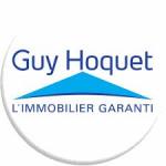 logo Guy hoquet immobilier delphimmo