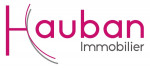 logo Hauban conseil