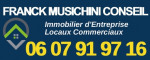 logo Agent commercial 3g immo musichini franck