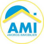 logo Amoros immobilier