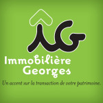 logo Immobiliere georges