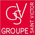 logo Groupe st victor