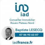 logo Iad france / baptiste lesecq