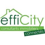 logo Efficity - villeurbanne - stéphane cammas