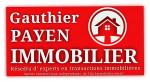logo David fougeirol - www.gauthier-payen-immobilier.com