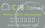 logo C.j.b conseil