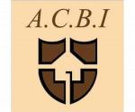 logo AGENCE CHRISTINE BOYER IMMOBILIER