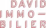 logo Cabinet david custine