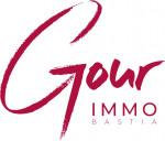 logo Avis immobilier -gour immobilier conseil