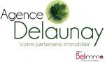 logo AGENCE DELAUNAY