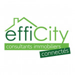 logo Efficity - poitiers - willy delhumeau