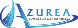 PRO COMM - Azurea Commerces
