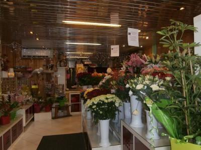 Fonds de Commerce Fleuriste Toulouse