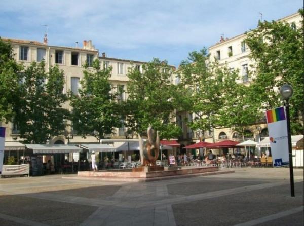 . Appartement F3 - Montpellier (34000)-1