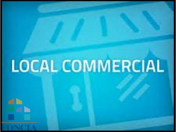 Vente Local commercial Lourdes