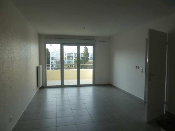 Appartement - Montpellier (34000)-2