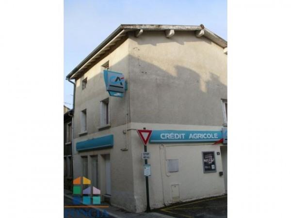 Location Local commercial Saint-Ferréol-d'Auroure 0