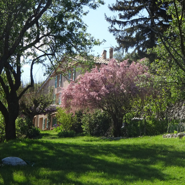 La maison vue du jardin en avril 2016