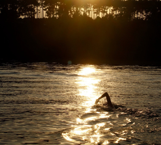 baignade du soir au lac