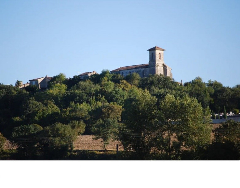 Location vacances Castéra-Lectourois -  Gite - 12 personnes - Barbecue - Photo N° 1