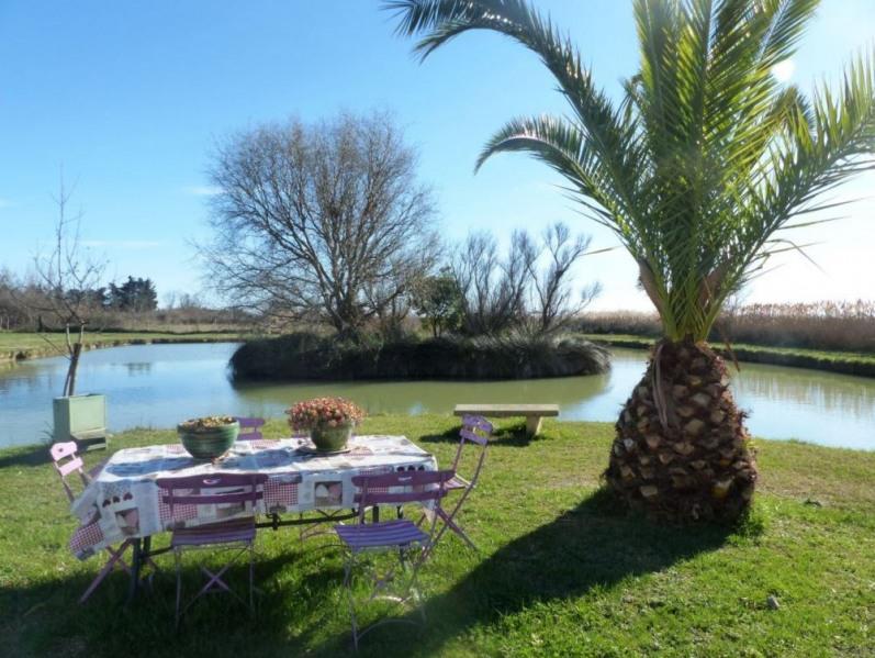 Location vacances Saintes-Maries-de-la-Mer -  Gite - 4 personnes - Barbecue - Photo N° 1