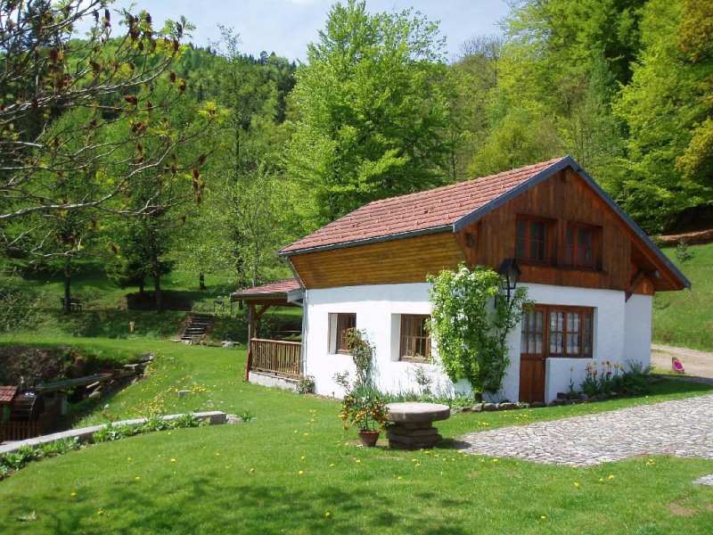 Holiday rentals Le Thillot - House - 3 persons - BBQ - Photo N° 1