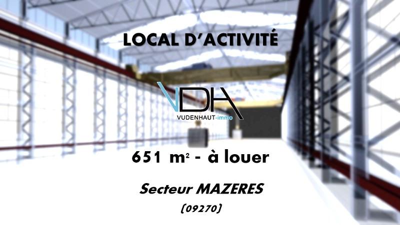 Local d'activités