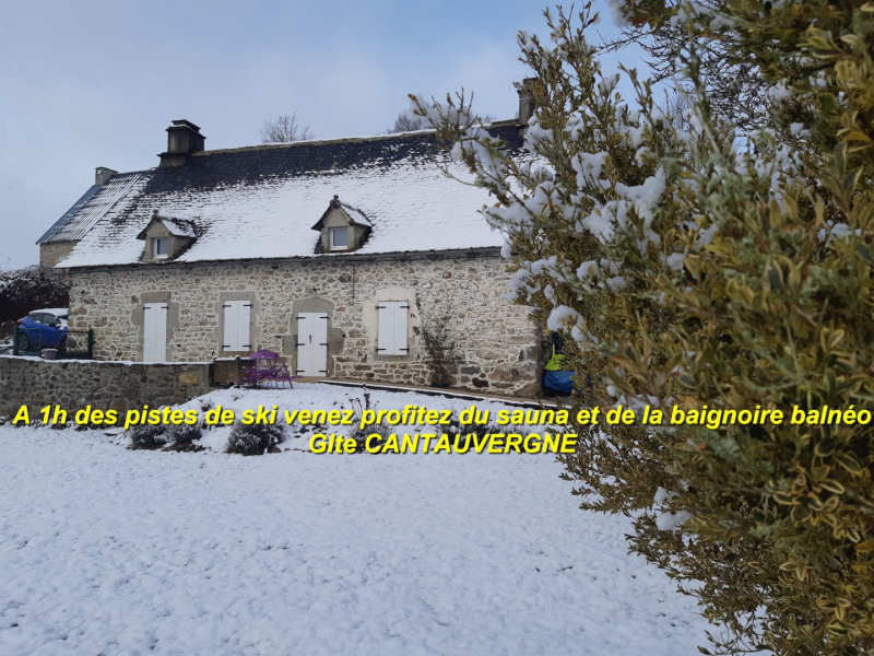 Holiday rentals Vebret - Cottage - 8 persons - BBQ - Photo N° 1