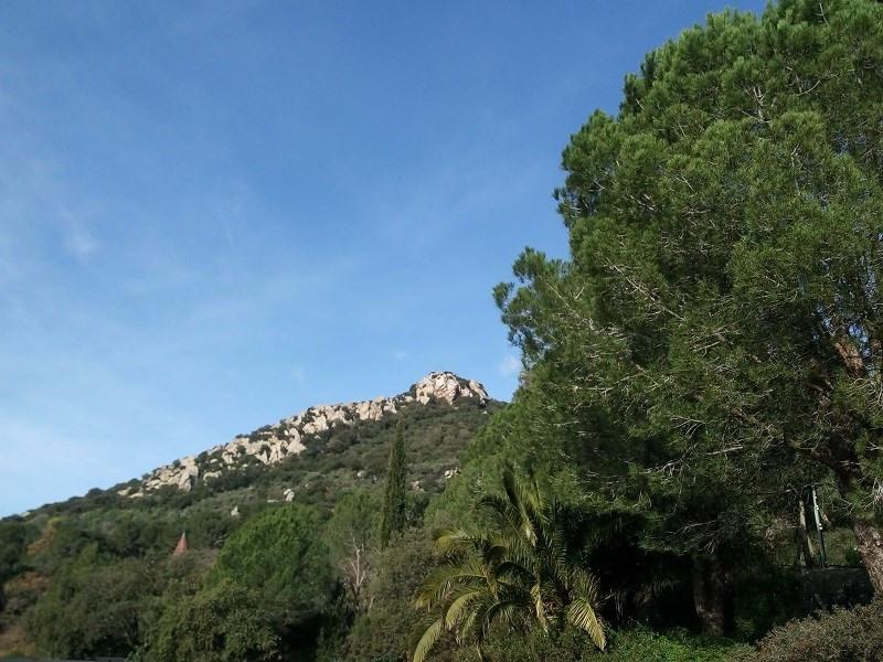 Location vacances Hyères -  Gite - 6 personnes - Chaise longue - Photo N° 1