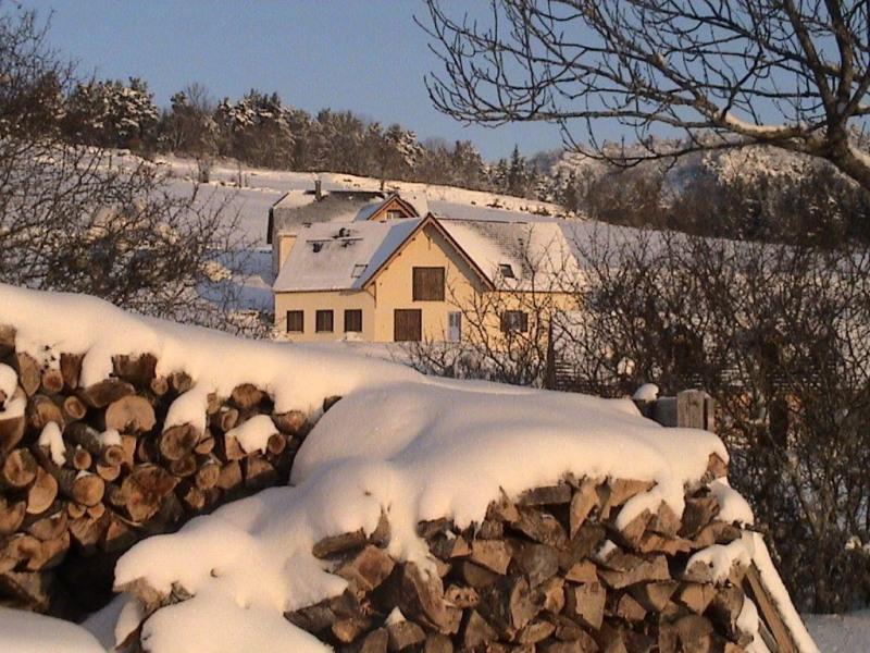 Ferienwohnungen Besse-et-Saint-Anastaise - Hütte - 16 Personen - Grill - Foto Nr. 1