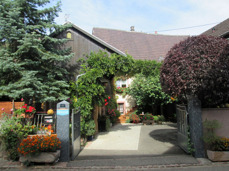 Holiday rentals Orschwihr - Cottage - 4 persons - BBQ - Photo N° 1