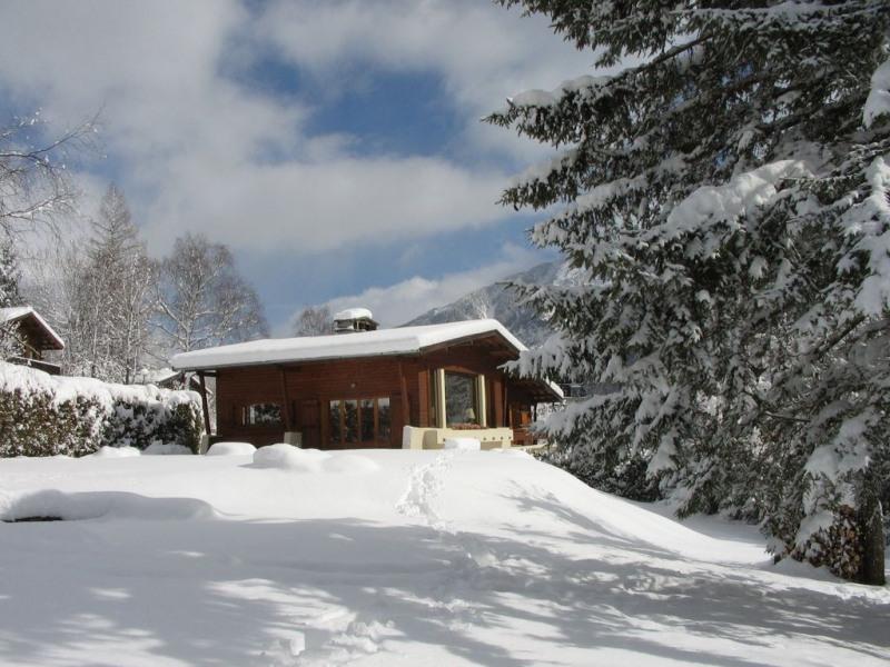 Jardin et chalet en hiver