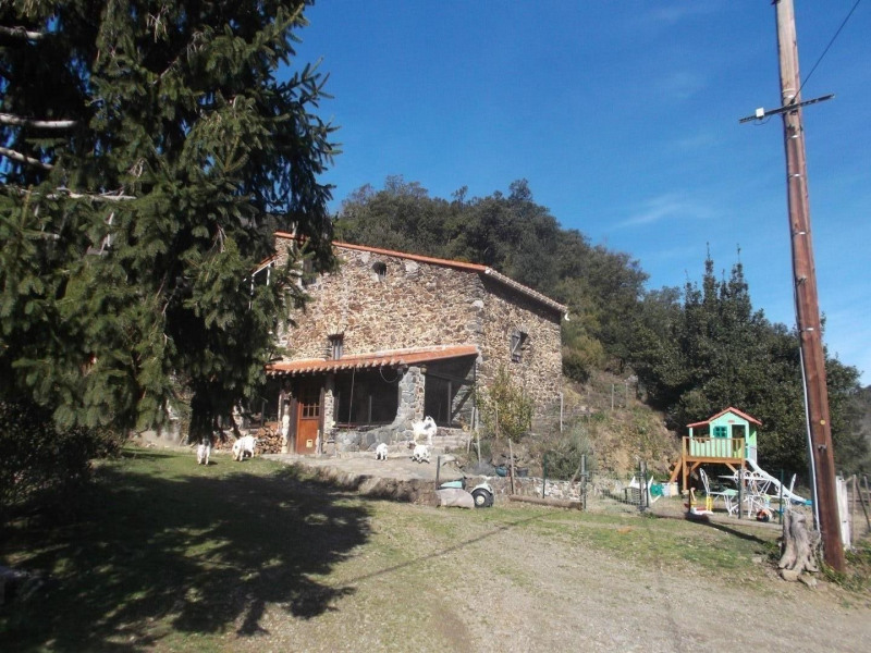 Location vacances Taillet -  Gite - 5 personnes - Barbecue - Photo N° 1