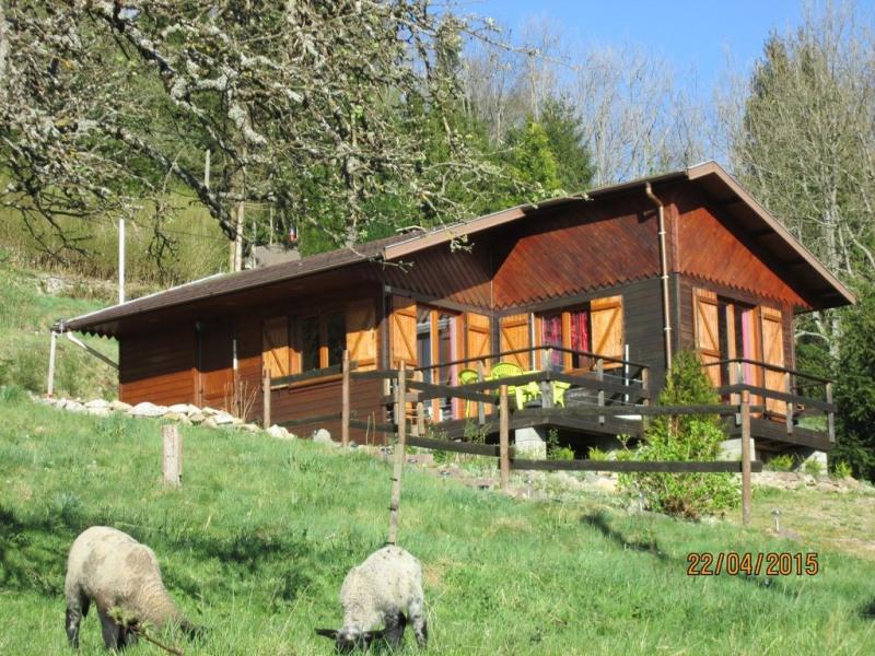Location vacances Plainfaing -  Maison - 5 personnes - Barbecue - Photo N° 1