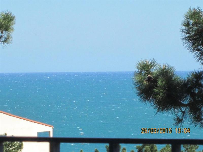 Holiday rentals Banyuls-sur-Mer - Apartment - 4 persons - Radio - Photo N° 1