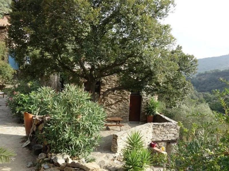 Location vacances Saint-Michel-de-Llotes -  Appartement - 4 personnes - Jardin - Photo N° 1
