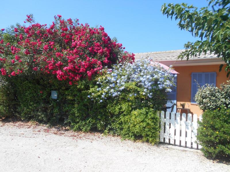 Location vacances Sanary-sur-Mer -  Maison - 4 personnes - Chaise longue - Photo N° 1