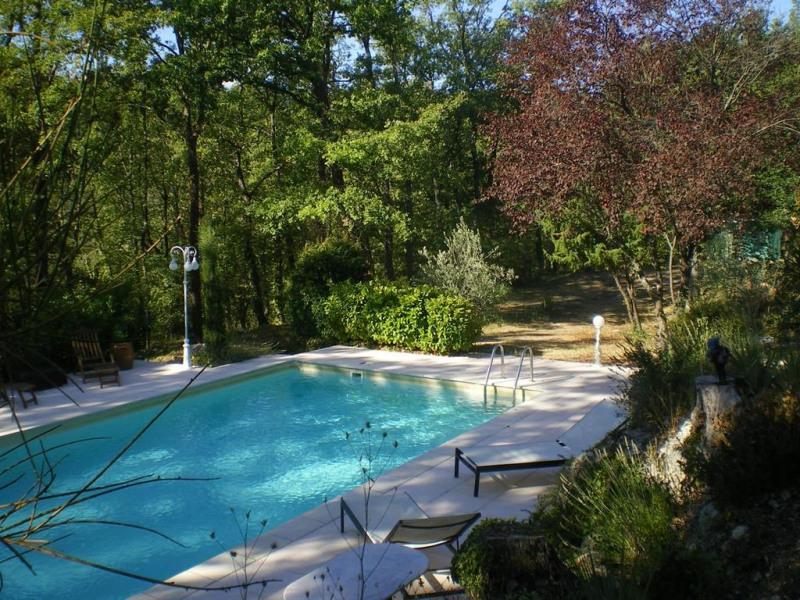 La piscine au milieu de la forêt