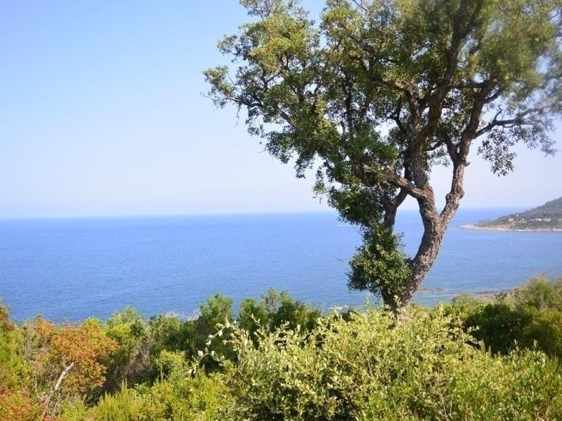 Location vacances Sari-Solenzara -  Maison - 8 personnes - Barbecue - Photo N° 1