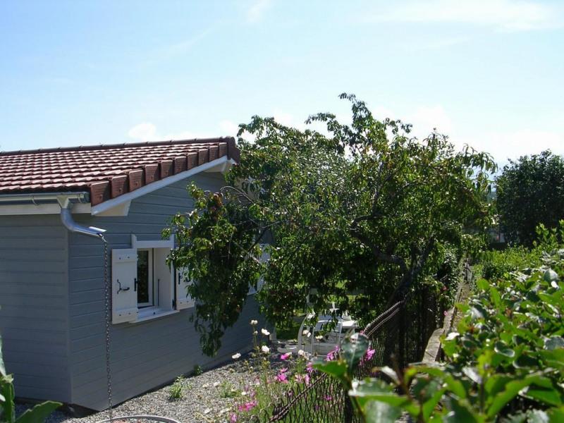 Location vacances Thonon-les-bains -  Appartement - 3 personnes - Barbecue - Photo N° 1